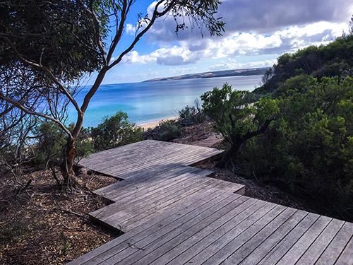 One Kangaroo Island image